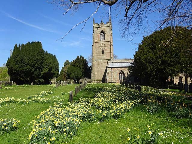 Mayfield Church in Spring with daffodils